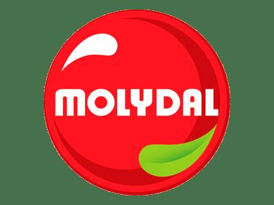 /proveedor/molydal/